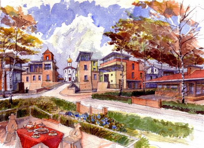 Jostovo rue